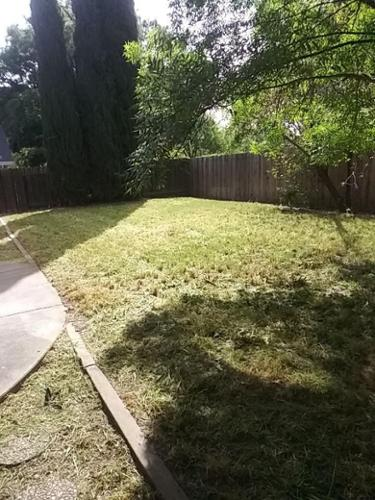 This is the type of results you can expect from Sharp Landscapes.